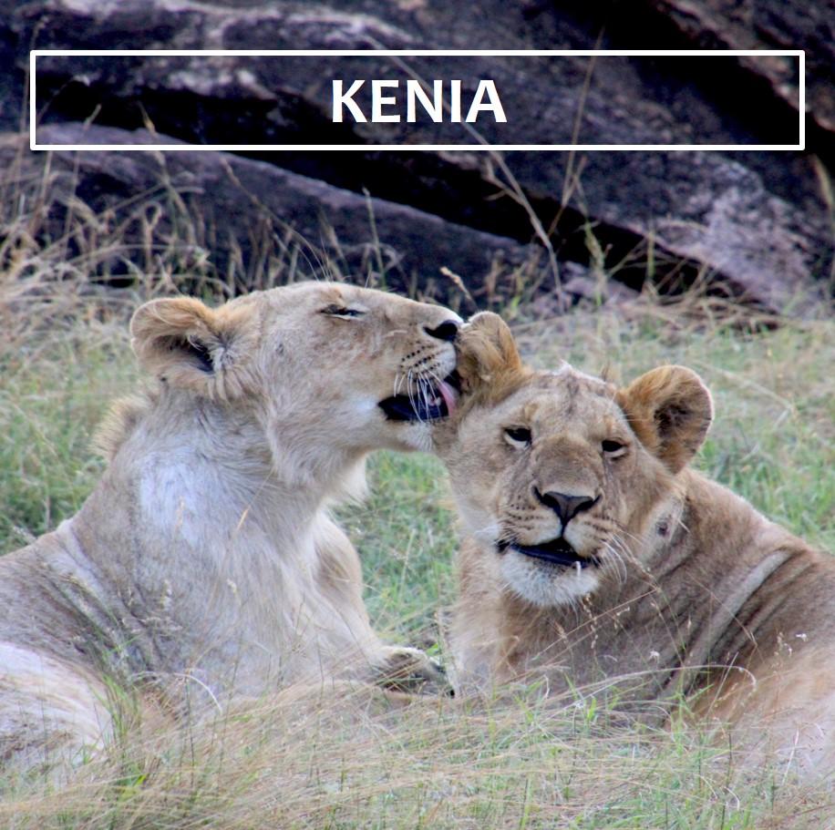 Kenia ES