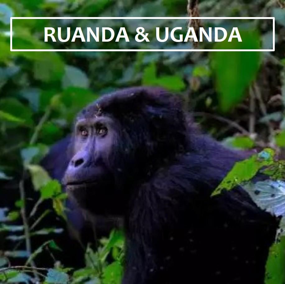 Ruanda ES
